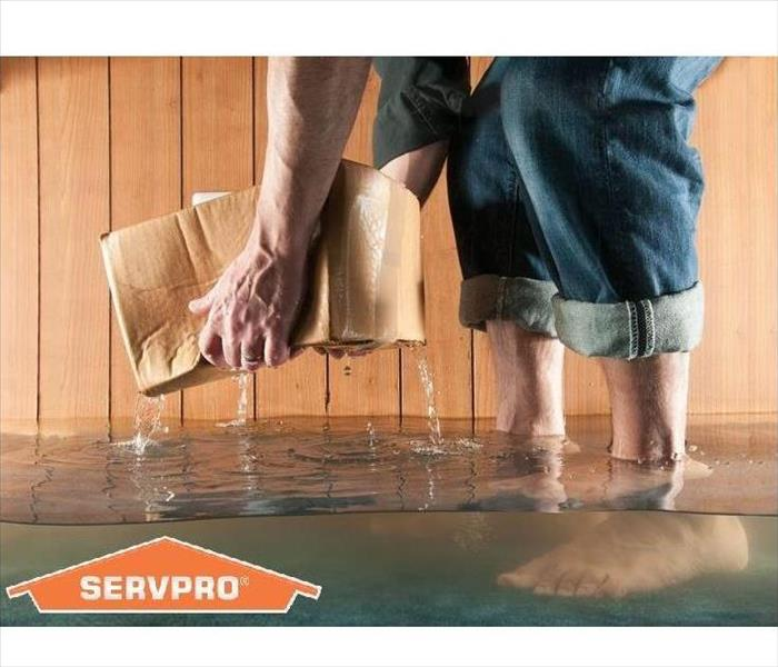 Water Damage Experts in Cleaning and Restoring your Flooded Basement