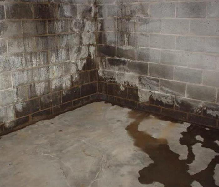 Water Damage Water Removal and Drying Out Your Basement Wall
