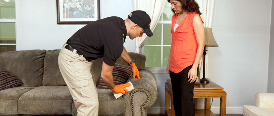 Braintree, MA carpet upholstery cleaning