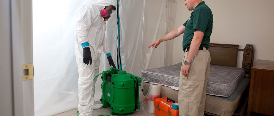 Braintree, MA mold removal process